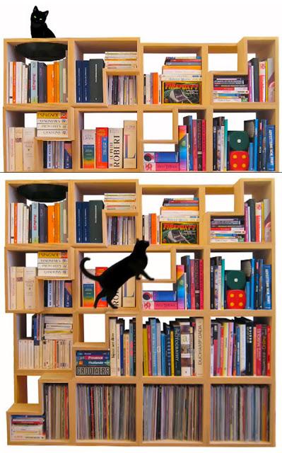 tudo-gato-design-arquitetura-cat-library-00a
